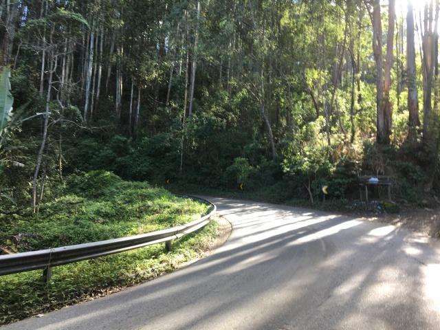 Serra Velha de Campos - Km 7 --> 4,3%