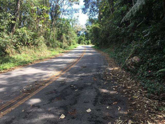 Pico do Jaraguá - Km 2